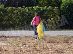 World clean up day: Alba pulisce le strade attorno alla tangenziale 2