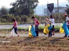 World clean up day: Alba pulisce le strade attorno alla tangenziale 4