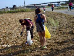 World clean up day: Alba pulisce le strade attorno alla tangenziale 5