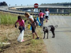 World clean up day: Alba pulisce le strade attorno alla tangenziale 7
