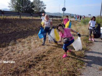 World clean up day: Alba pulisce le strade attorno alla tangenziale 8