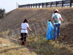 World clean up day: Alba pulisce le strade attorno alla tangenziale 9