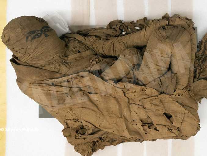 A Bra con la fondazione Crc per la prima volta il restauro di una antica mummia egizia