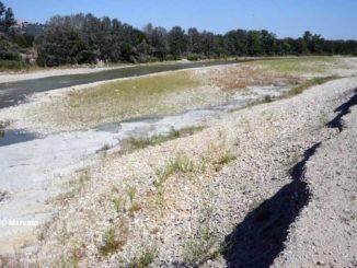 La siccità persiste. Piogge previste sono dopo il 10 settembre