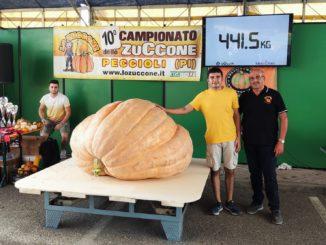 Una zucca da 441 chili a Niella Belbo